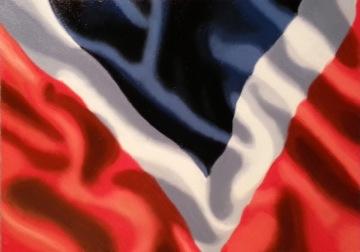 NAVA-Flag-WS