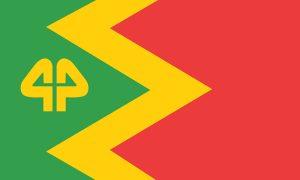 NAVA-44-Flag-3